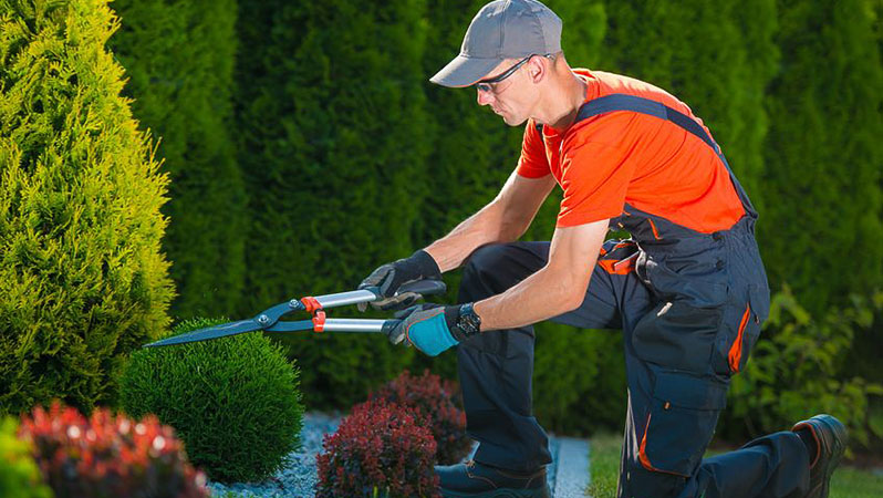 alabama_green_industry_jobs_gardening_services